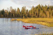 Midnight Sun Floating In Lake Rovaniemi