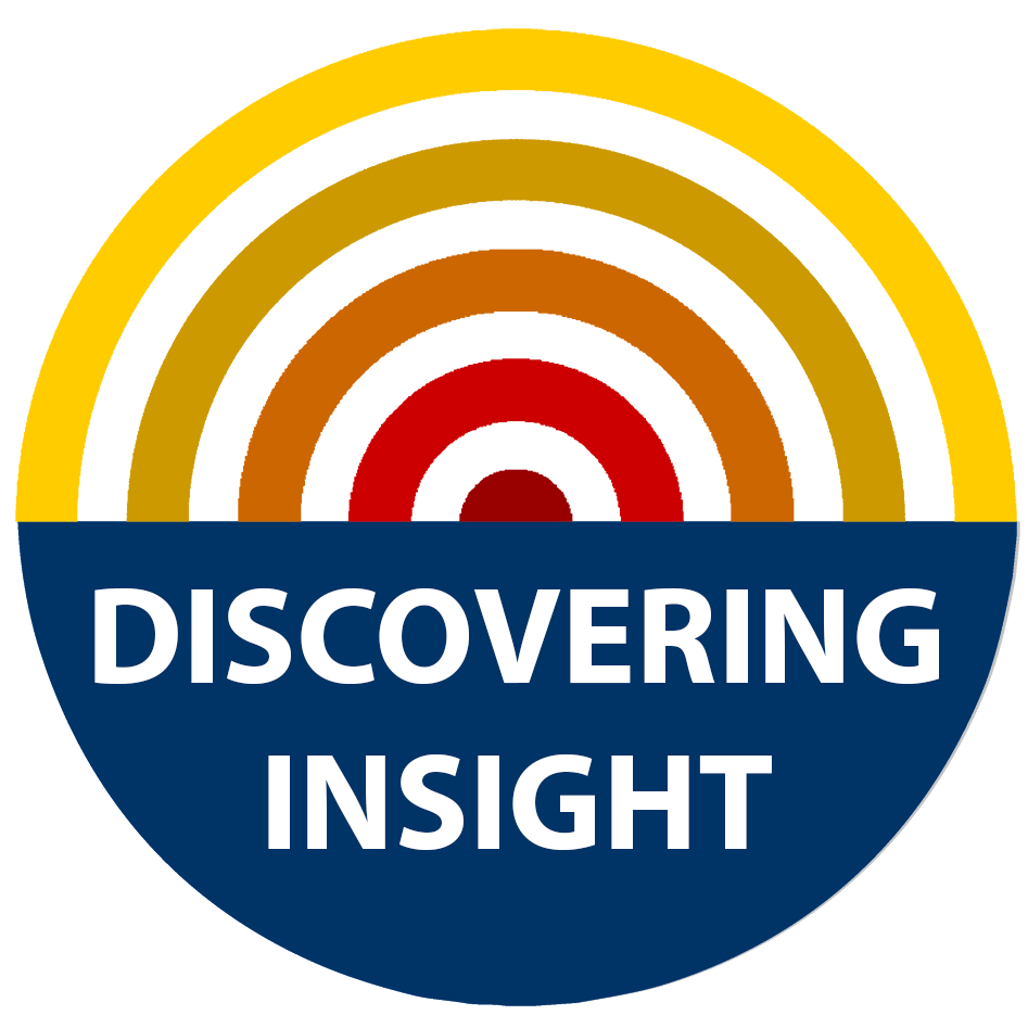 Discovering Insight