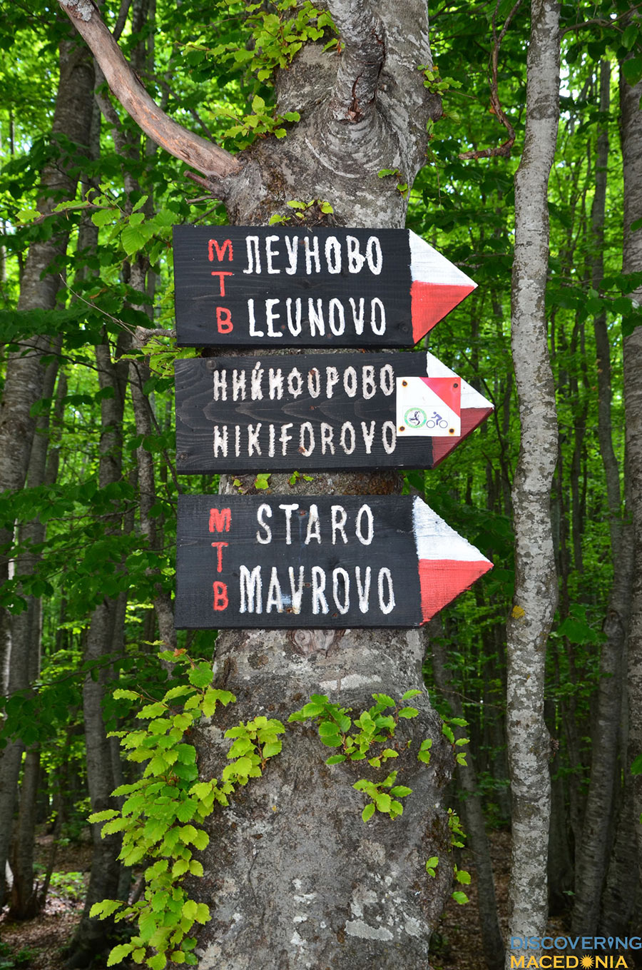 Mavrovo-(2)