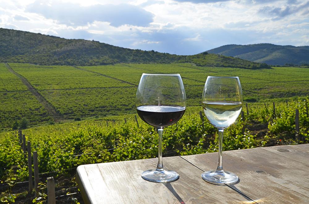Macedonian Wine