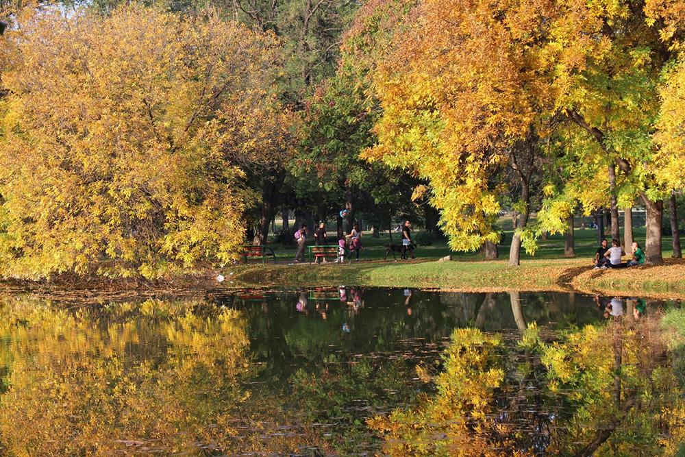 Skopje City Park 2