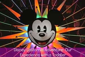 Family Vacation: Disney California Adventure