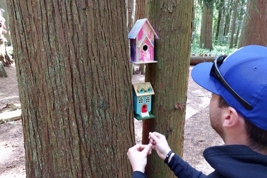 redwoodpark01