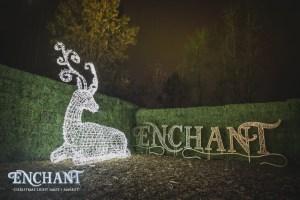 PLACES TO SEE: Enchant Christmas Light Maze & Market