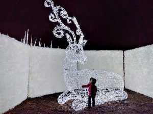 Places to See: Enchant Christmas