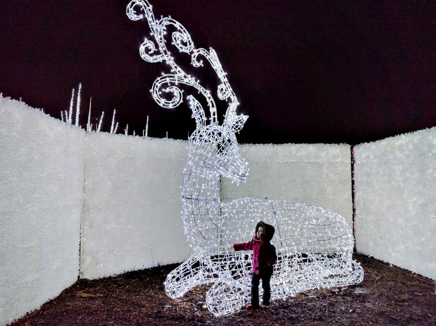 Enchant Christmas in Vancouver, reindeer statue
