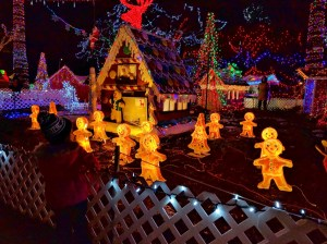 4 Reasons Why Bright Nights in Stanley Park is a Christmas Favourite