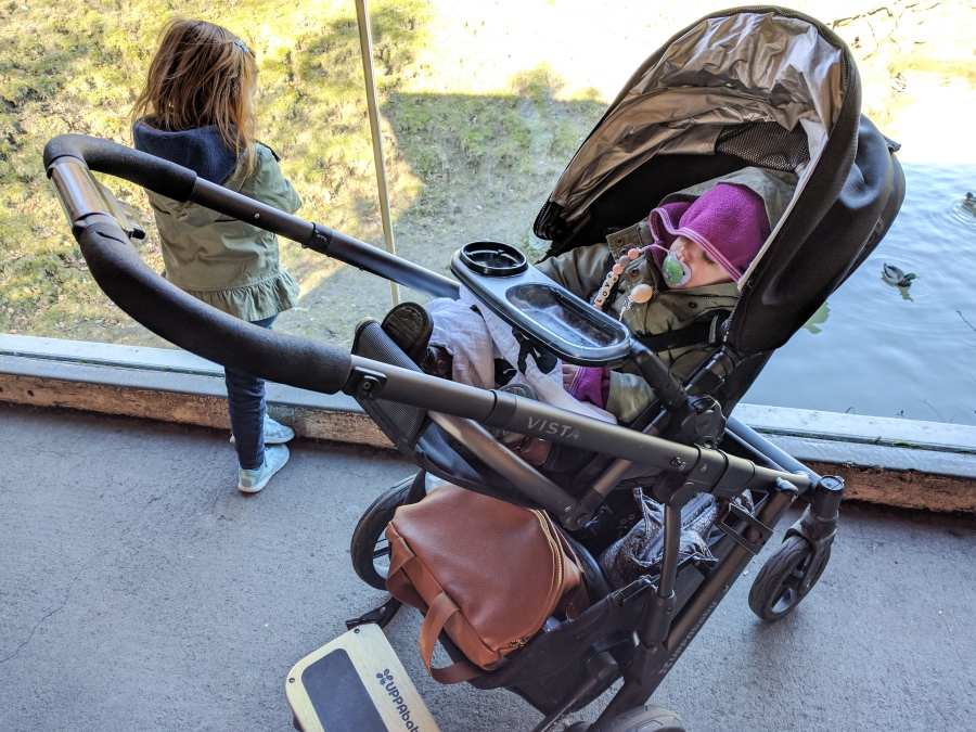 Family Day: Woodland Park Zoo, toddler asleep in her stroller, preschooler looking in an exhibit