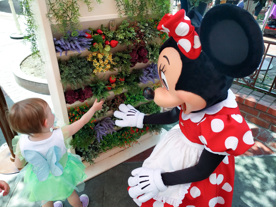 Taking a toddler to Disneyland. Character breakfast. Plaza Inn. Breakfast with Minnie Mouse.