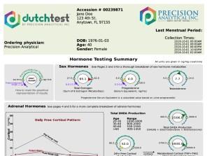 Sample Dutch Hormone Test Summary