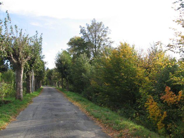 The main road through the village.