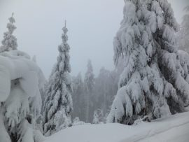 Snowy co Beskydy mountains, Czech Republic.nditions.