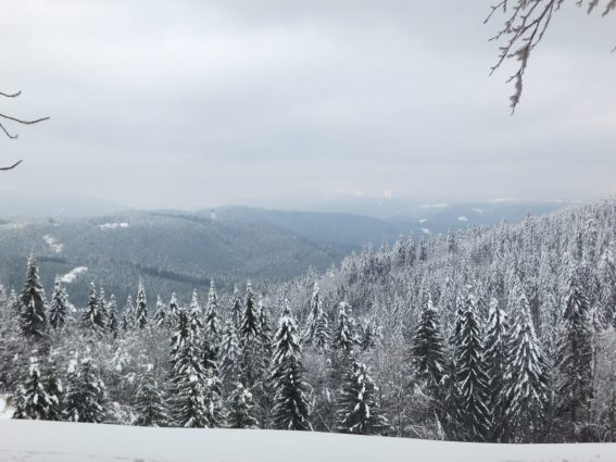 Cross country skiing, Beskydy Mountains, North Moravia, Czech Republic