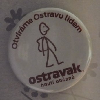 Czech elections 2014 The Ostravak Citizens' Movement
