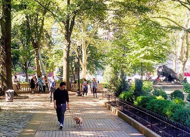 Rittenhouse Square Discoverphl Com