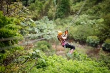 Visit Toro Verde Nature Adventure Park Discover Puerto Rico