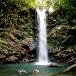 Avocat waterfall in Trinidad's Northern Range. Photo by Stephen Broadbridge