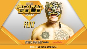 16 Carat Gold