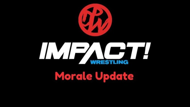 Impact Wrestling Morale Update | May 2019