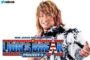 Lions Break Project 3