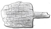 Fg. 8 - Pagaia in legno da Trana (TO)