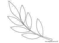 Ramoscello ulivo da colorare | Disegni da colorare