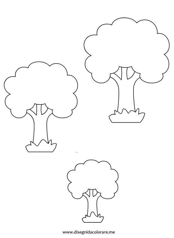 Alberi di varie dimensioni  Disegni da colorare