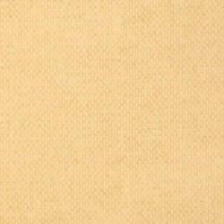T14171