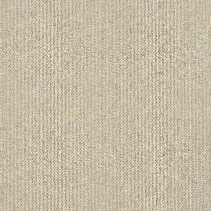 T41130