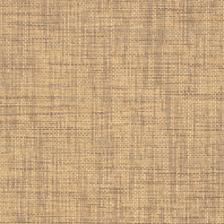 T41141