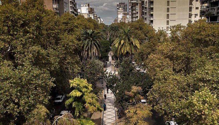 City tour Rosario: recorrido guiado por bulevar Oroño