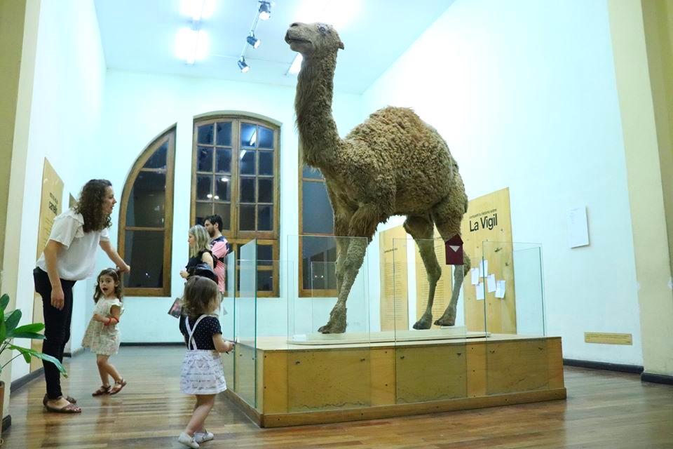 historia del museo de ciencias naturales