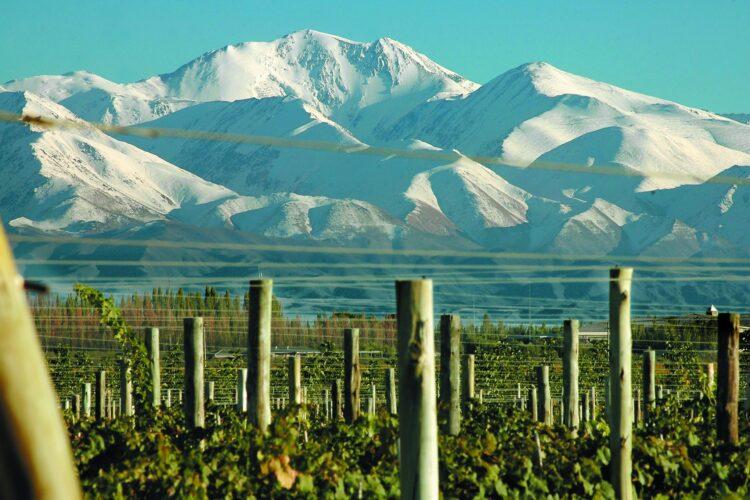 Bodegas en Mendoza
