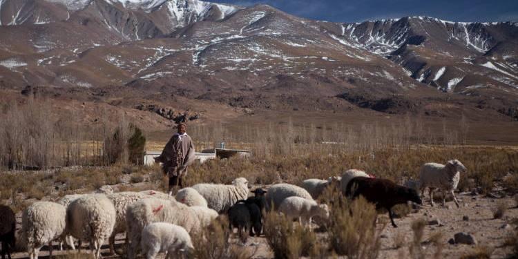 Permiso para circular por el norte argentino