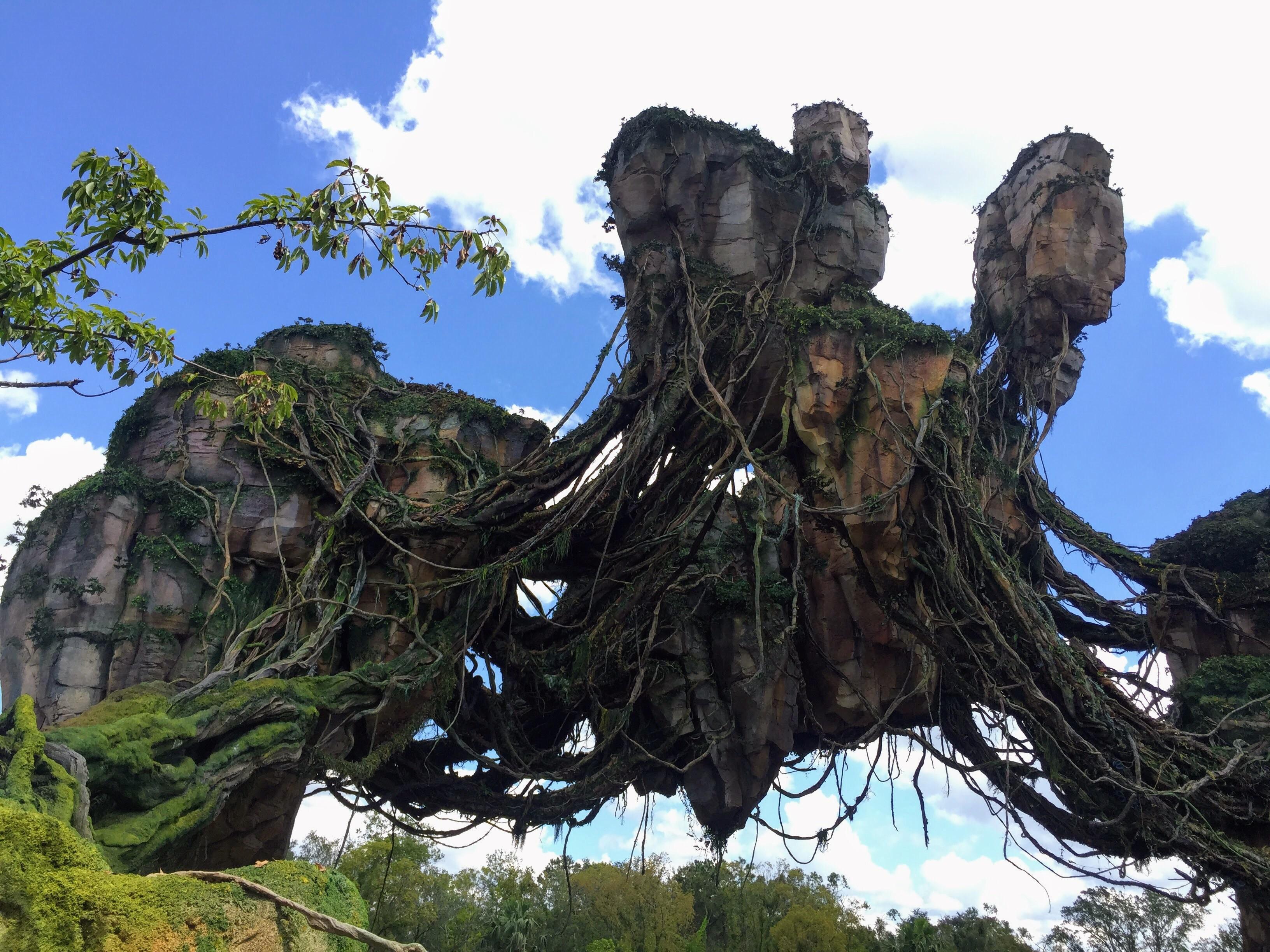 Happy 1 Year Anniversary Pandora – The World of Avatar