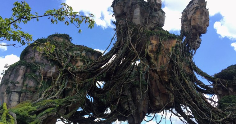 Happy 1 Year Anniversary Pandora – The World of Avatar