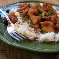 Bourbon Chicken..Yes, Like at the Mall