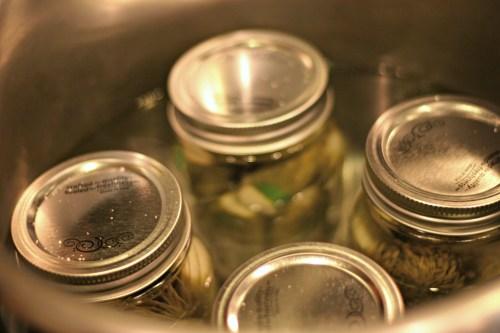 water bath pickles