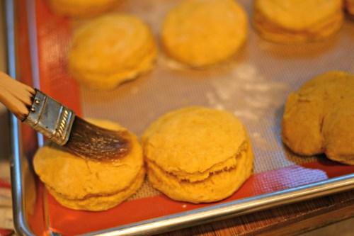 Pumpkin Biscuits brush with butter