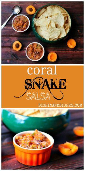 Corral Snake Salsa Recipe apricot