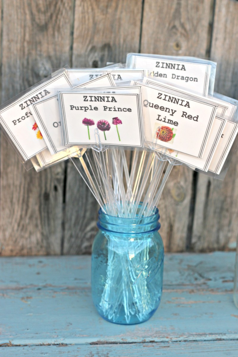 DIY Plant Markers That Last | Dishin & Dishes