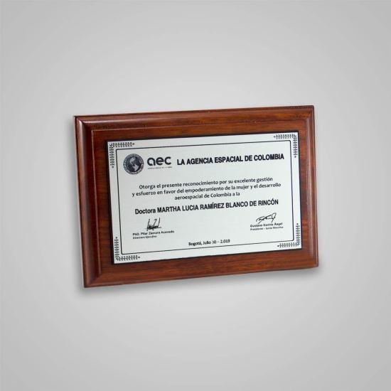 Placa Conmemorativa Agencia Espacial