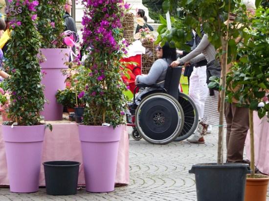 20150329 Verona mio fiore carrozzina disabile