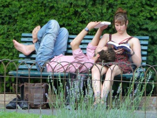 20120715-verona-lettura-dismappa-548