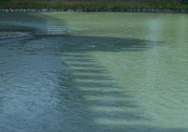 l'ombra del ponte di castevecchio sul fiume adige