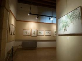 20121104-flora-picta-pittura-botanica-contemporanea-verona
