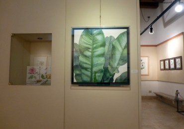 20121104-flora-picta–pittura-botanica-contemporanea-verona