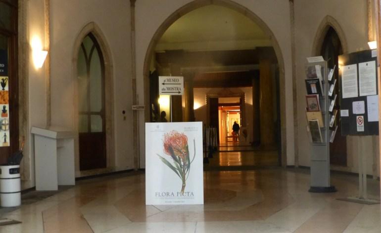20121104-florapictamuseominiscalchierizzo-mostrapitturabotanica-verona