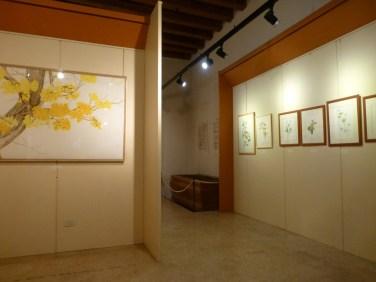 20121104-florapictamuseominiscalchierizzopittura-botanica-contemporanea-verona