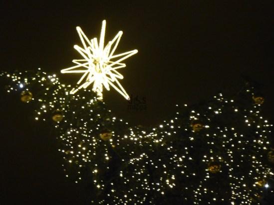 20121215-stellaluminosaalberonataleverona